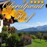 Oberulpoint Hof