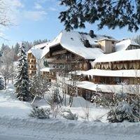 Hotel Schöne Aussicht Hornberg/ Schwarzwald