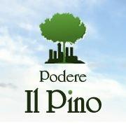 Podere Il Pino