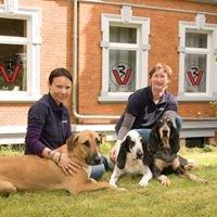 Tierarztpraxis Blankenburg