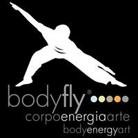 Bodyfly System