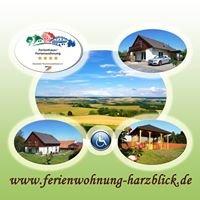 Ferienwohnung-Harzblick