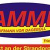 Stammer - Letzter Kaufmann vor Dagebüll