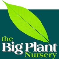 The Big Plant Nursery
