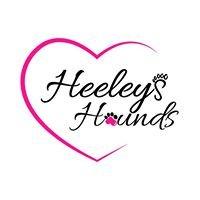 Heeleys Hounds