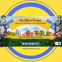 Via Albere - Verona