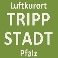 Luftkurort Trippstadt/Pfalz