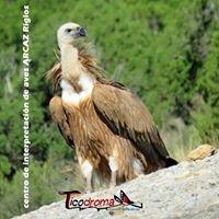 Centro de Interpretación de Aves ARCAZ