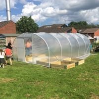 The Polytunnel Guy's