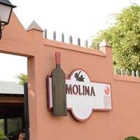 Salón de Eventos Bodega Valle Molina