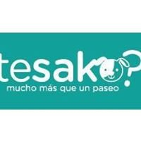 TesaKo?