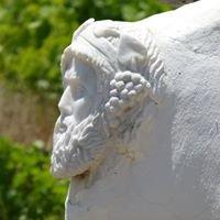 Mykonos VIOMA Organic Farm & Vineyard - Οικολογικό Αγρόκτημα Μυκόνου ΒΙΩΜΑ