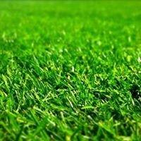 Conserv-A-Lawn