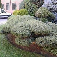 Casaña Jardineros