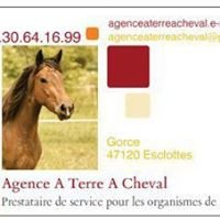 Agence A Terre A Cheval - Amélie Langella