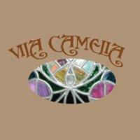 Vila Camelia