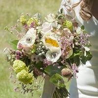 Pecci Arte Floral