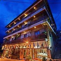 Hotel Egnatia Metsovo