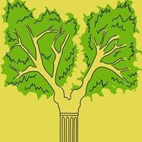 Culturaleza bosquescuela