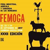 Feria Industrial, Agrícola y Ganadera de Los Monegros ( Femoga)