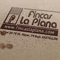 Fincas La Plana Castellon