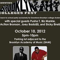 Downtown Brooklyn Colleges Fest