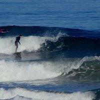 Poisson Escuela De Surf Cafeteria