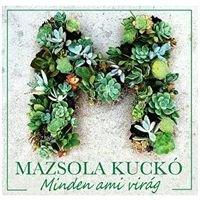 Mazsola Kuckó