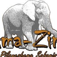 Ama-Zing Pilanesberg Safaris
