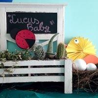 Lucusbaby escuela+spa