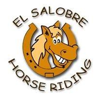 El Salobre Horse Riding