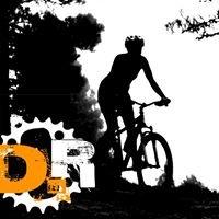 D-Route Bike Store