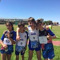 Escuela de Atletismo Apolana Alicante