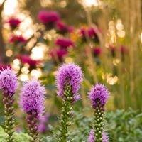 Distinctive Gardens by Pete Moss Inc.