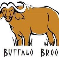 Buffalo Brooke
