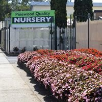 Pinewood Quality Nursery