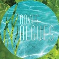 Noves Algues