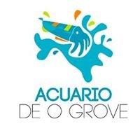 Acuario O Grove