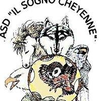 Il Sogno Cheyenne