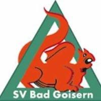 SV Kieninger - Bau Bad Goisern