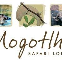 Mogotlho Safari Lodge, Khwai River, Botswana