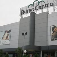 Centro Comercial Burgo de Las Rozas, S.A.