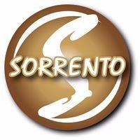www.sorrentonovias.com