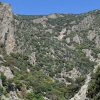 Parque Natural de Cardeña y Montoro