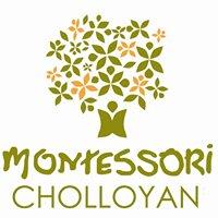 Comunidad Montessori Cholloyan