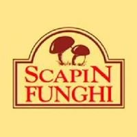 Scapin Funghi