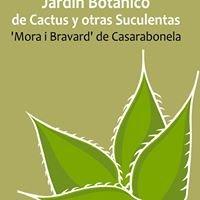 Jardín Botánico de Cactus y Otras Suculentas 'Mora i Bravard'