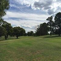 Coleambally Golf Club