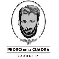 Pedro De La Cuadra Barbería