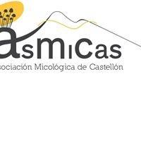Asociación Micológica de Castellón